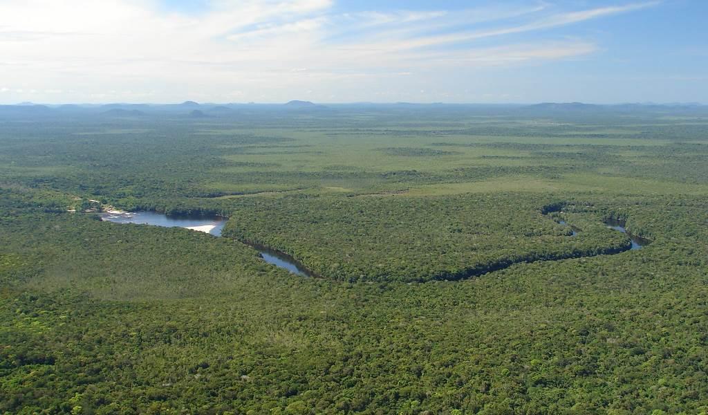 Amazonía venezolana: ¿qué es y cuáles son sus principales amenazas?